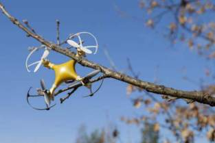 How-to-get-a-drone-out-of-a-tree-1